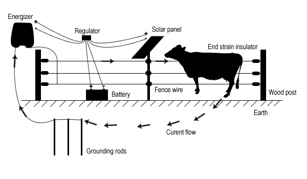 Diagram for electric fence